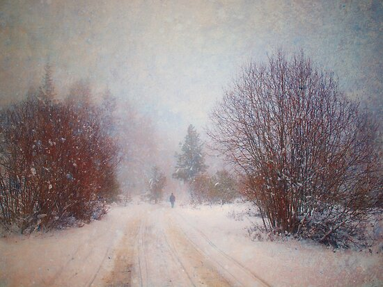The Man in the Snowstorm by Tara  Turner