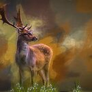 Stag . . . . gered by David Drummond