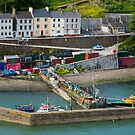 Small Colorful Dock in Cobh Ireland by DARRIN ALDRIDGE