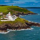 Roche's Point Lighthouse Cork Ireland by DARRIN ALDRIDGE