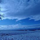 Blue Winter Day by TriciaDanby