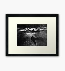 Playground in The Winter Sun Framed Print
