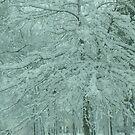 white tree by ANNABEL   S. ALENTON