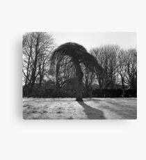 Tree In A Freeze Canvas Print