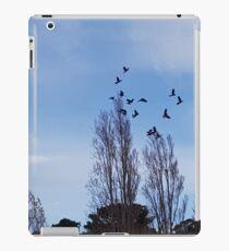 Black Cockatoo Flock iPad Case/Skin