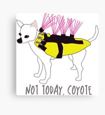 Not Today, Coyote - Tough Little Chihuahua in a Spiked Jacket Canvas Print