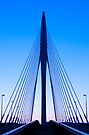 Symmetry in Indigo by ferryvn