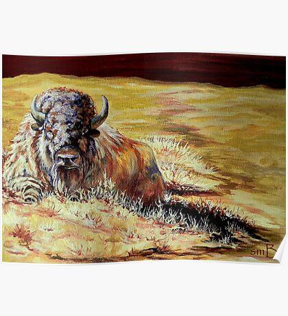 Prairie Colors Poster