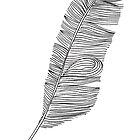 Feather black and white doodle by katesl