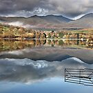 A Gate to nowhere at Coniston Water in the English Lake District by Martin Lawrence