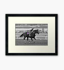 Breeders' Cup Classic World Champion Zenyatta Framed Print