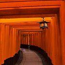 The Torii Gates of Fushimi Inari-taisha  by Prismatique