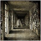 Roaming the Halls by Lux Enbom