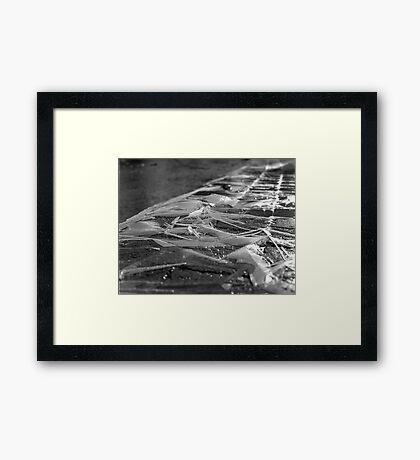 Ice Ice Baby Framed Print