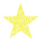 Stars But No Stripes by Carol Bleasdale