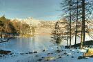 The January Tarn by Jamie  Green