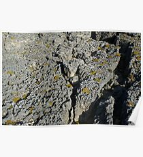 Limestone Poster