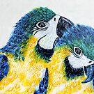 Two Macaw Parrots by Kathie Nichols