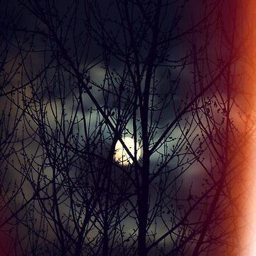 Full Moon  by hispurplegloves