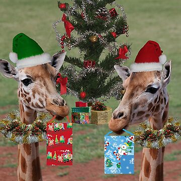 Christmas Giraffes by JennyB