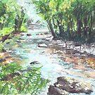 River Barle, Exmoor by Barnaby Edwards