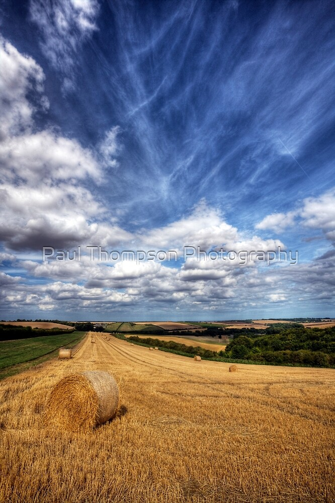 Straw by Paul Thompson Photography
