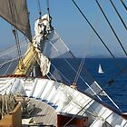 Sails Off the Bow ! by Nancy Richard