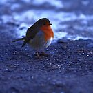 Happy Christmas! by Peter Sweeney