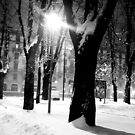 A snowy night in Milan by Antonello Mariani