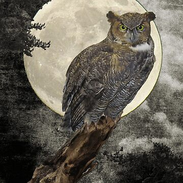Rustic Great Horned Owl Bird Moon A271 by byNicol