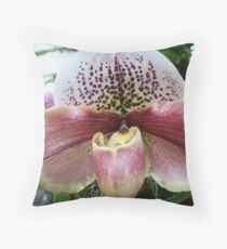 Bulldog Slipper Orchid (paphiopedilum complex hybrid) Throw Pillow