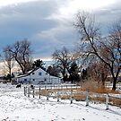 White Barn by Pamela Hubbard
