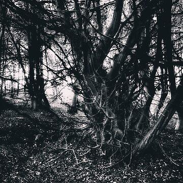 Spooky Tree by Nigdaw