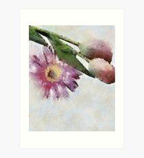 Blooming friends Art Print