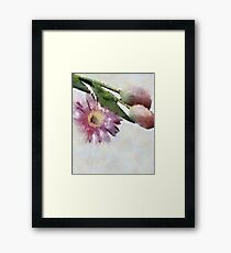 Blooming friends Framed Print