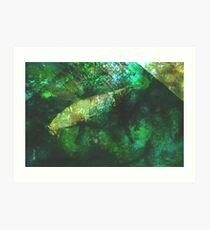 rainforest waters Art Print