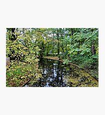 vondel park, autumnal amsterdam Photographic Print