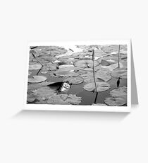 Spilled Greeting Card