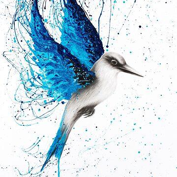 Aussie Blue by AshvinHarrison