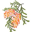 Handdrawn Australian Grevillea Pantone Living Color by thatsgraphic