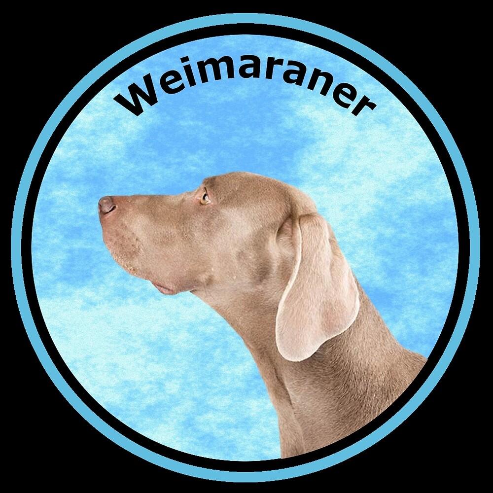 Weimaraner Dog by rsparksa