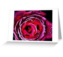 Indi Punk Rose Greeting Card