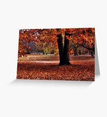 Wonderful fall Greeting Card