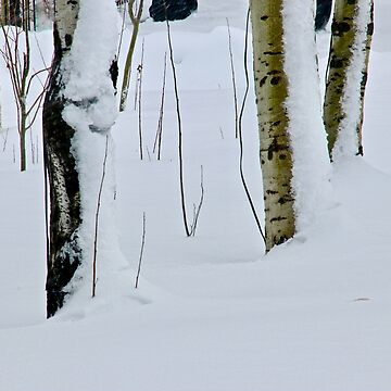 Winter Abstract by lenzart
