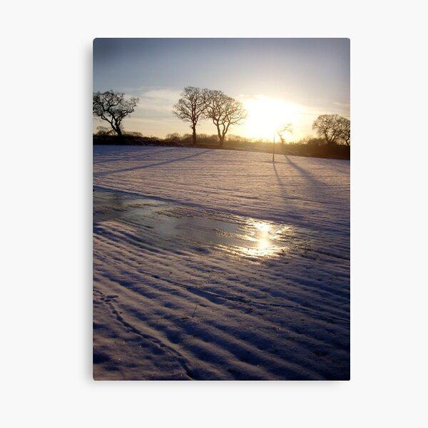 Dalmeny Winter Sun Canvas Print