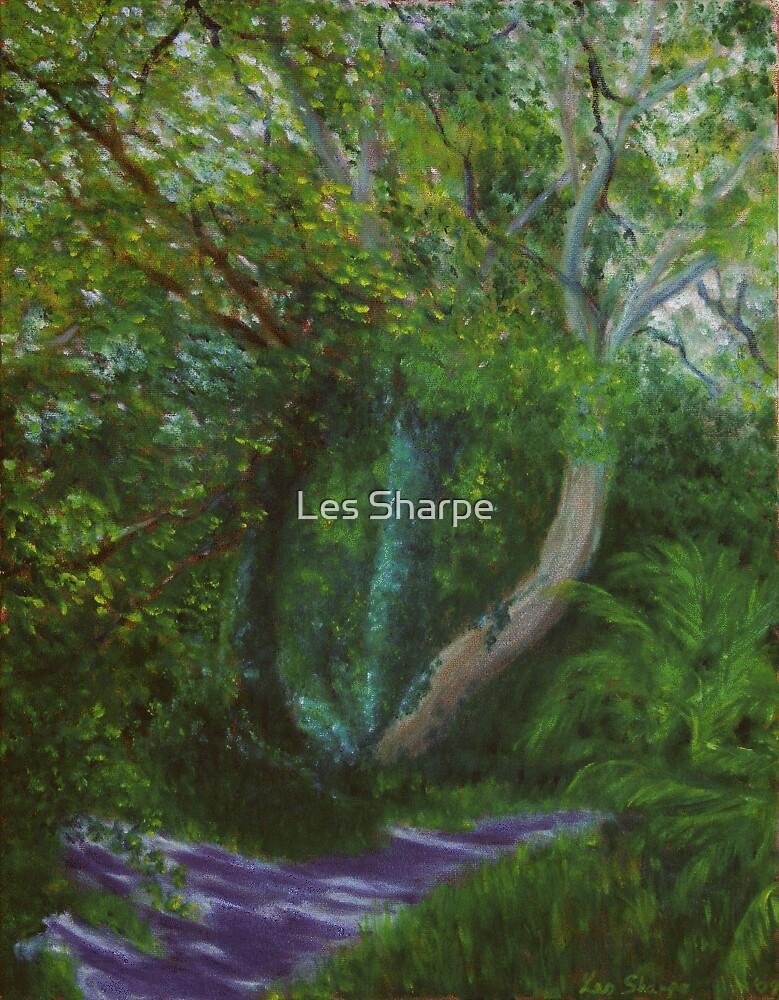Dappled Light, Killynether Wood by Les Sharpe