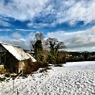Snow View by Richard Horsfield