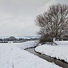 Snow at Durleigh Brook by kernuak