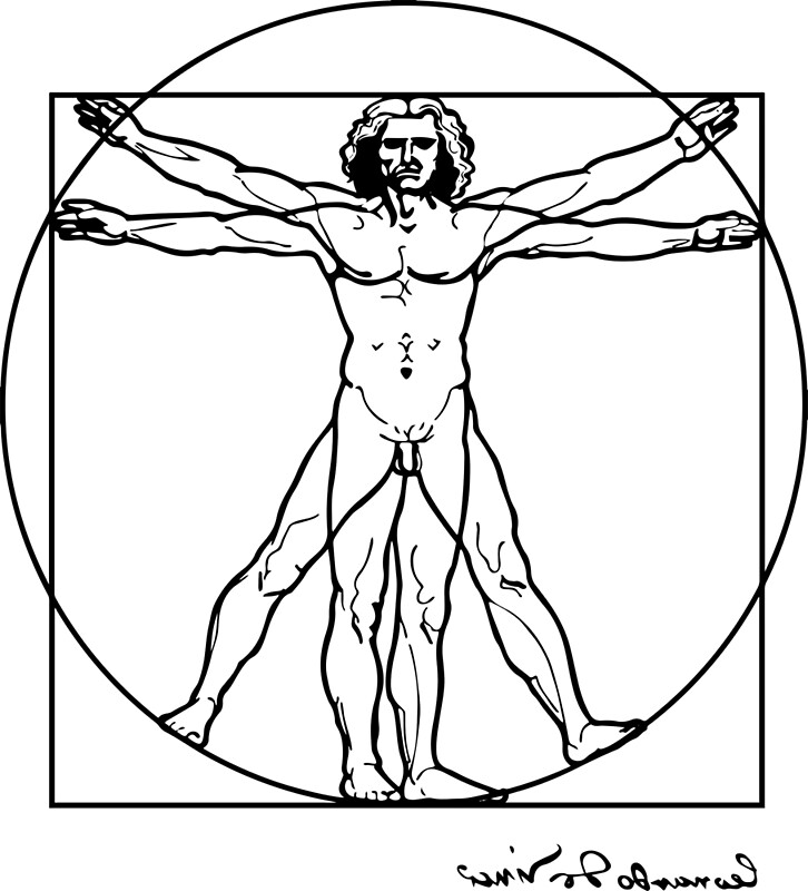 Leonardo Da Vinci Vitruvian Man 1490 Reproduction Sketch Artwork