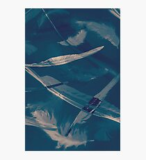 Feathers floating in the air Photographic Print